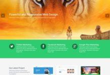 HTML5 CSS3 Website Template