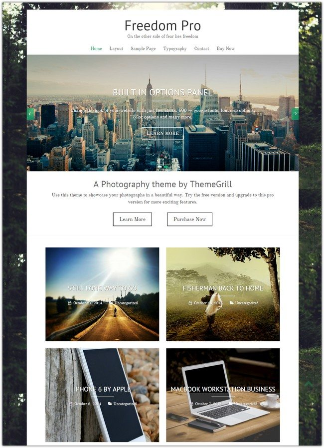 Freedom Pro WordPress Theme