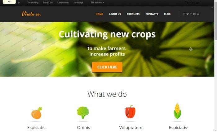 Gardening Responsive Website Template