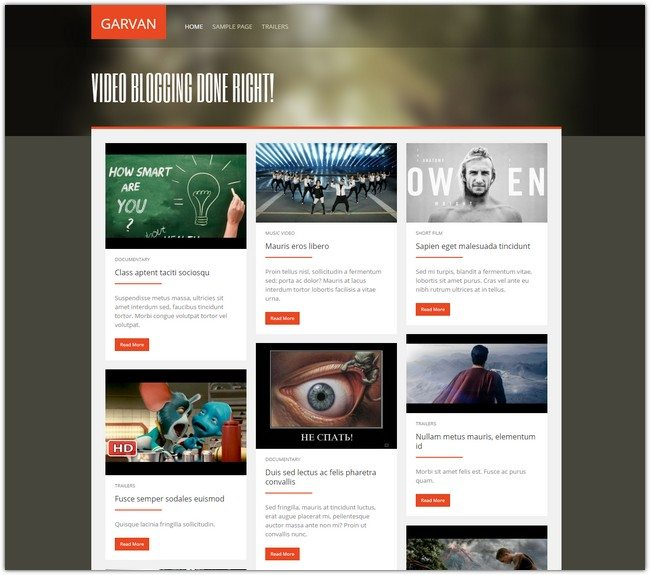 Garvan Video WordPress Theme