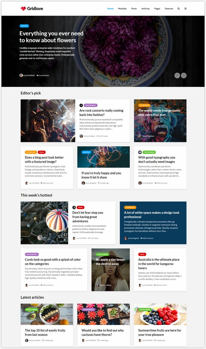 Gridlove - Creative Grid Style Magazine WordPress Theme