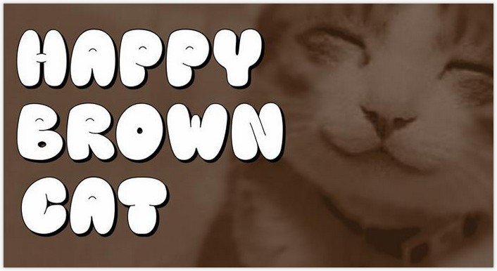 Happy brown cat Font