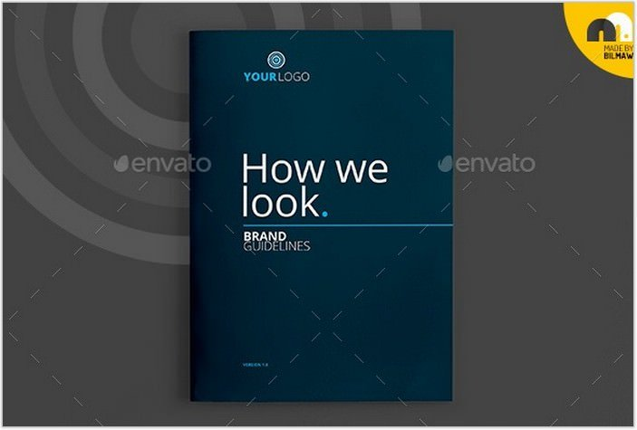 How We Look - Brand Guidelines Brochure
