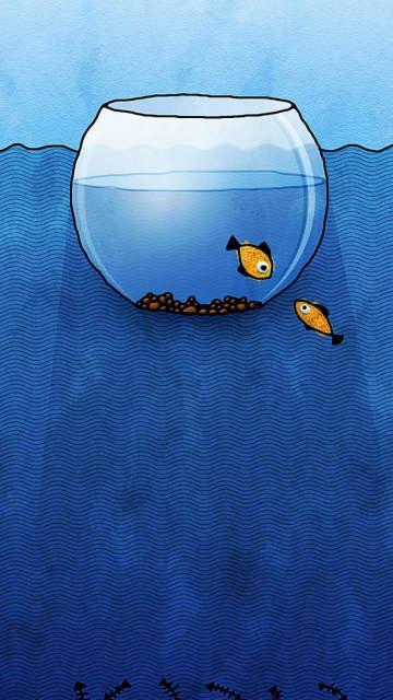 Iphone-aquarium-fish-water