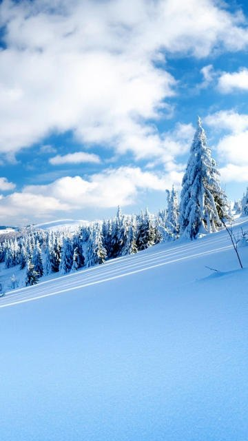 Iphone snow slope winter mountains resort mountain-skiing trees fir-trees sky clear Wallpaper