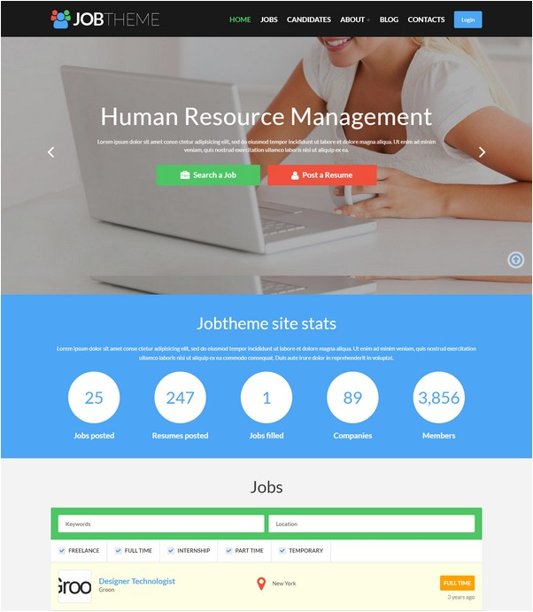 Job Portal Responsive WordPress Theme # 2