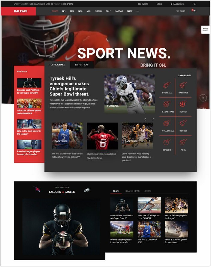 KALLYAS -Sports News WordPress Theme