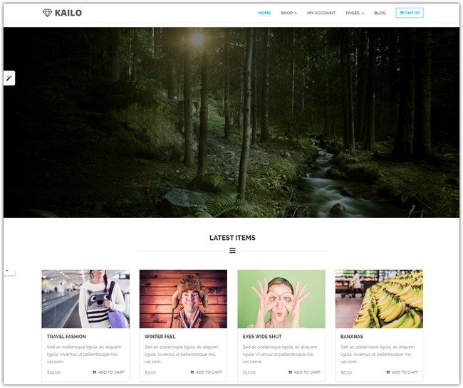 Kailo – WP Theme for Easy Digital Downloads