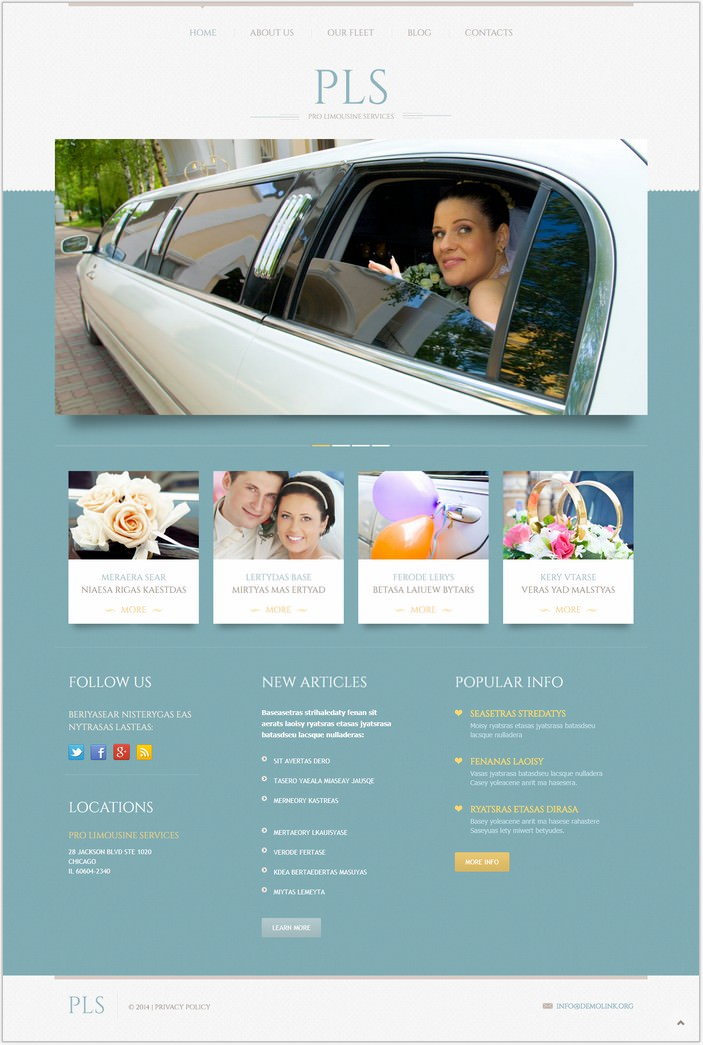 Limousine Services Responsive WordPress PHP Theme
