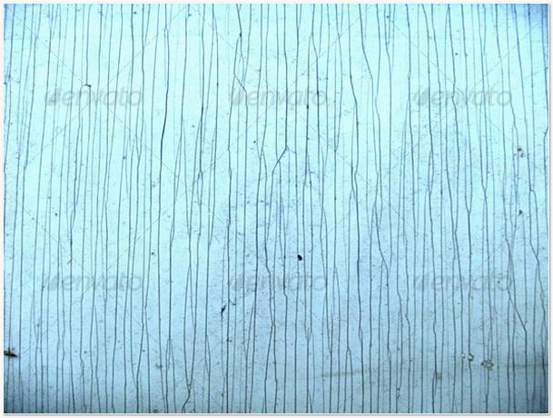 Lines in texture