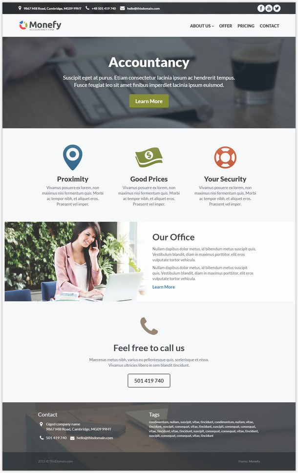 Monefy - best for small business wp theme
