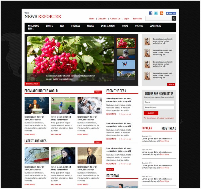 New Reporter Bootstrap Responsive Web Template