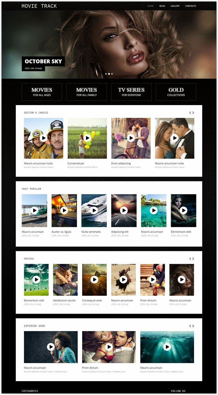Online Movies WordPress Theme
