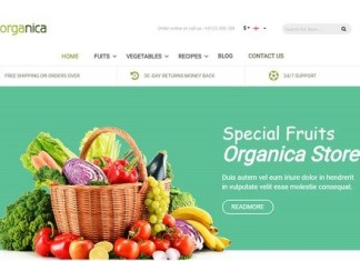 Food Store Magento Theme