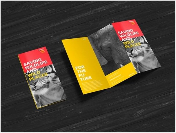 Premium Z-Fold Brochure Mockup