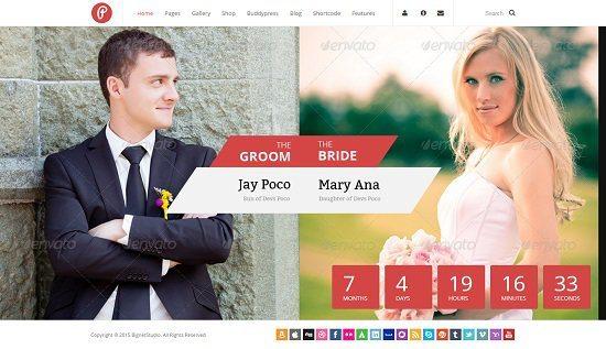 Pump - Responsive Wedding & Multi-purpose Theme