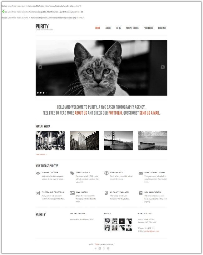 Purity Responsive, Clean, Minimal & Bold Template