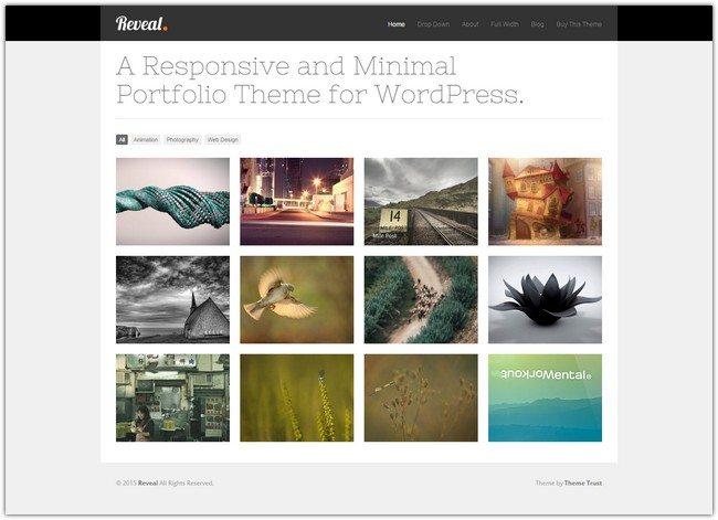 Reveal WordPress Theme