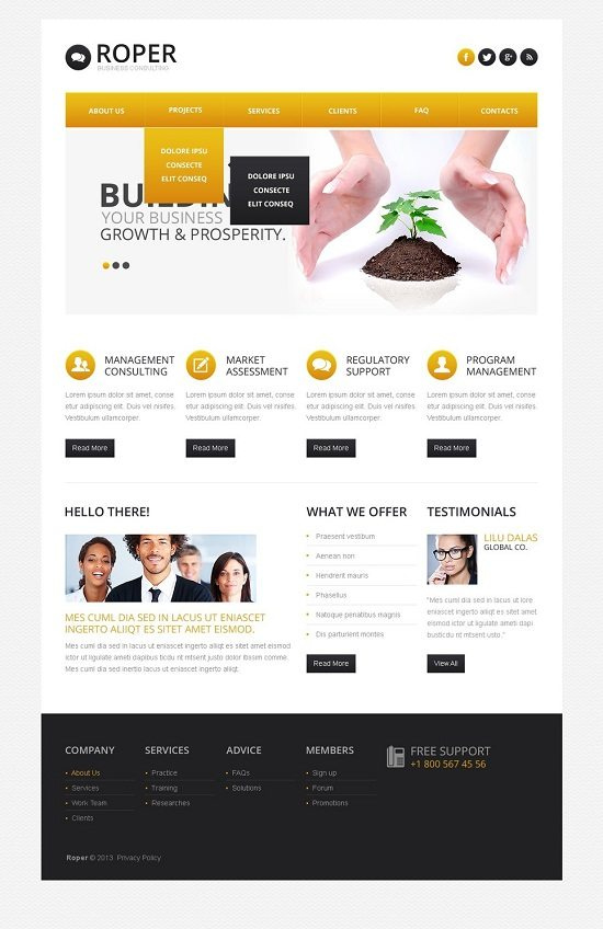 Roper Consulting Responsive Website Template