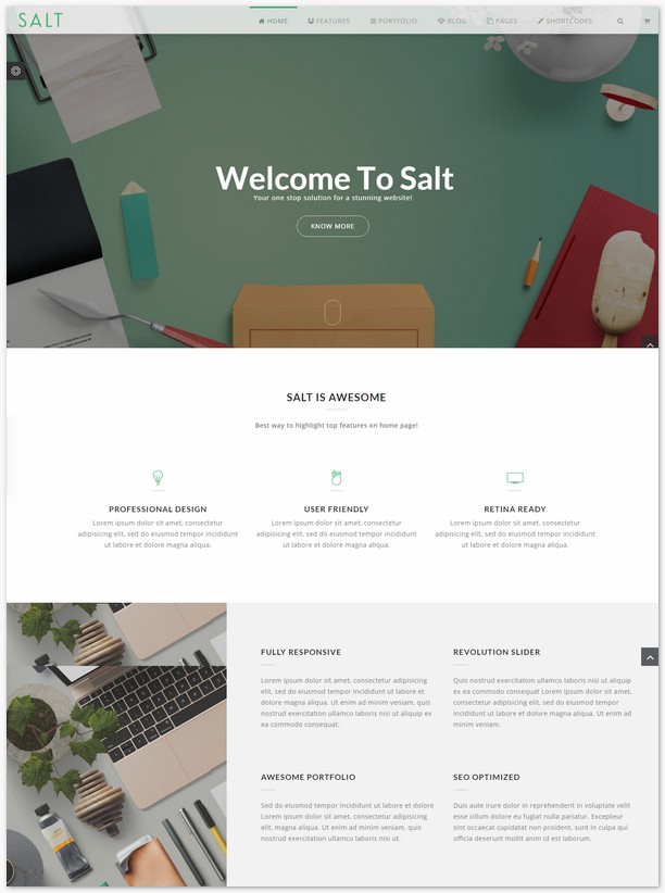 Salt - Multi-purpose HTML5 Template