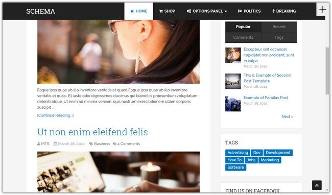 Schema Fastest SEO WordPress Theme
