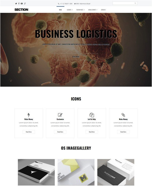 Section - Free Multipurpose Joomla template