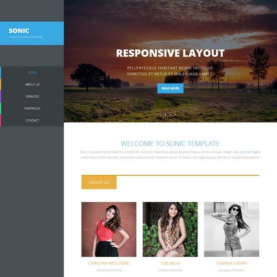 Sonic Responsive Template