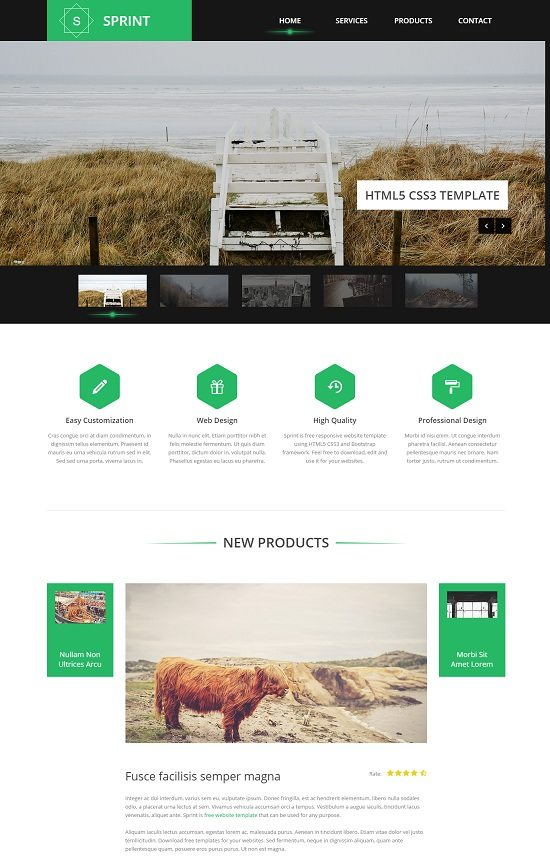 Sprint – Free HTML5 Template