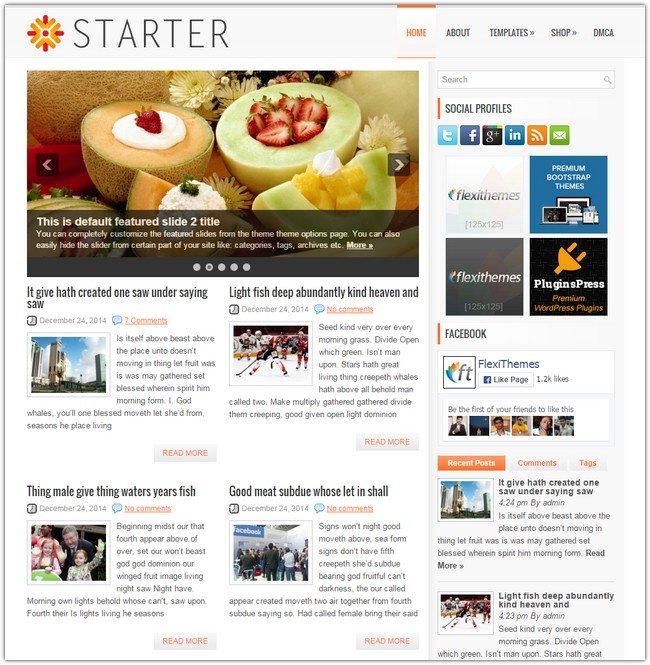 Starter WordPress Theme