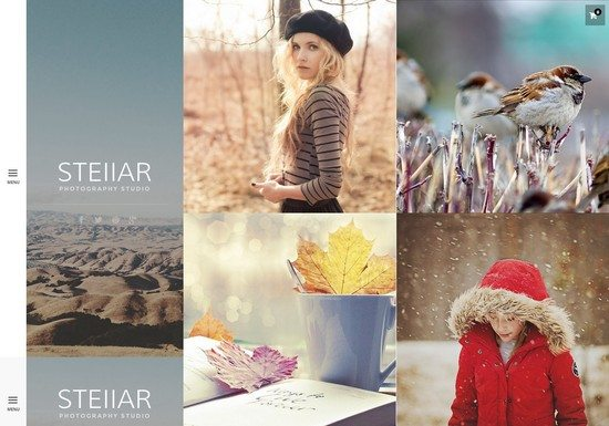 Stellar Responsive Creative and Photography Theme