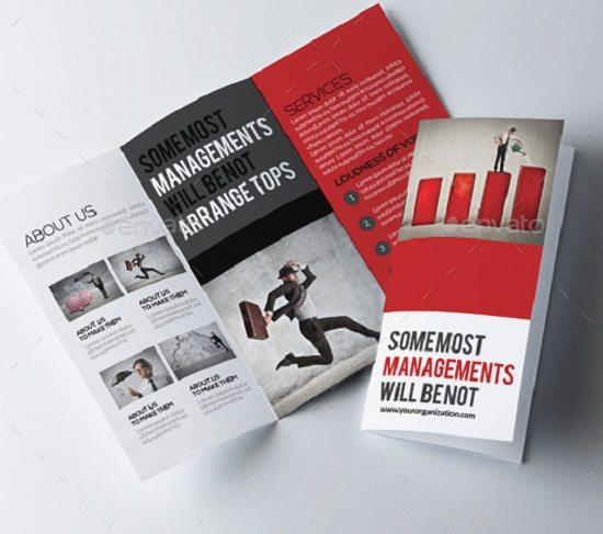 Tri Fold Business Brochure Bundl