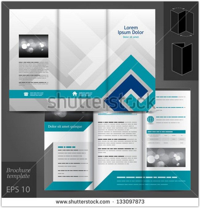 Vector gray brochure template