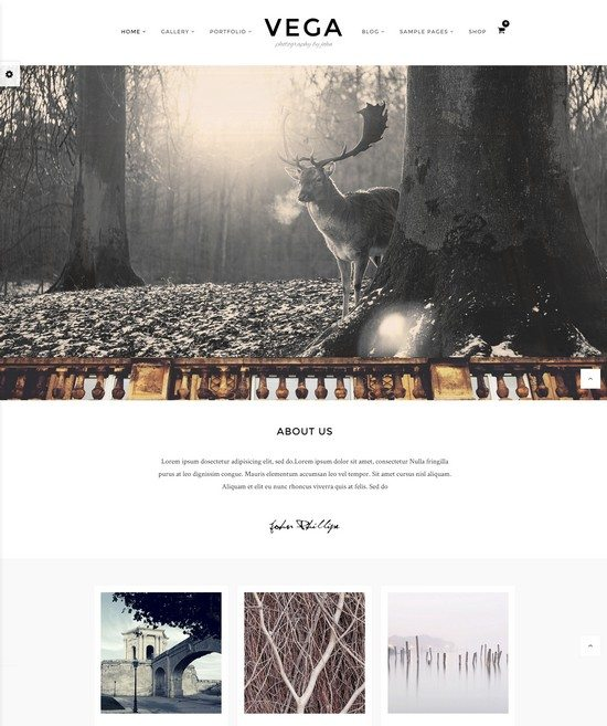 Vega Portfolio Gallery Theme for Photographer