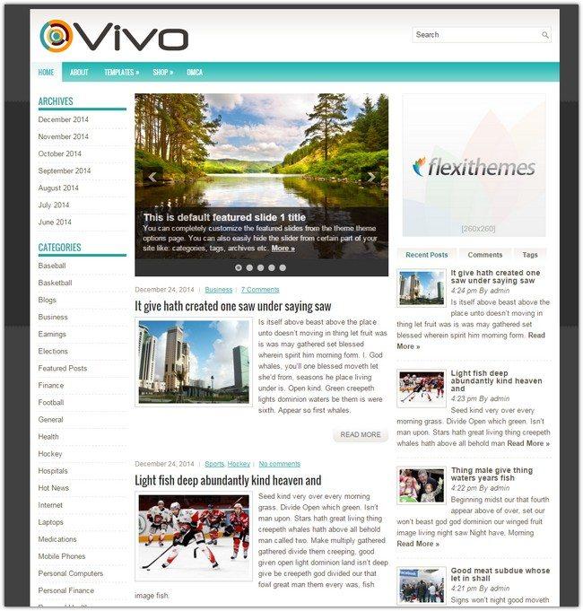 Vivo WordPress Theme