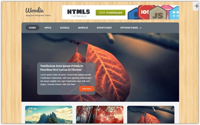 Woodie WordPress Theme