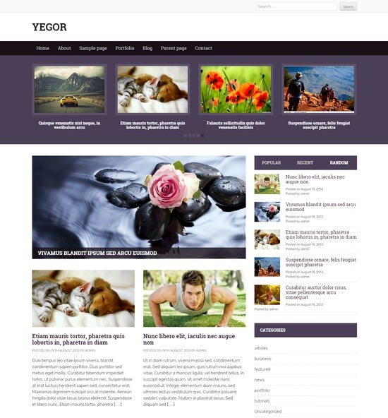 Yegor –  free premium News WordPress theme