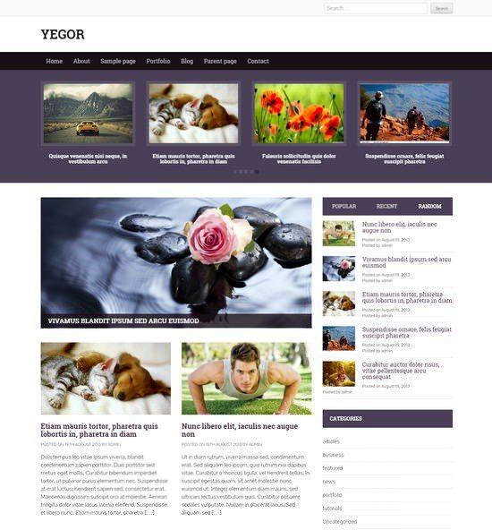 Yegor – free premium News WordPress theme
