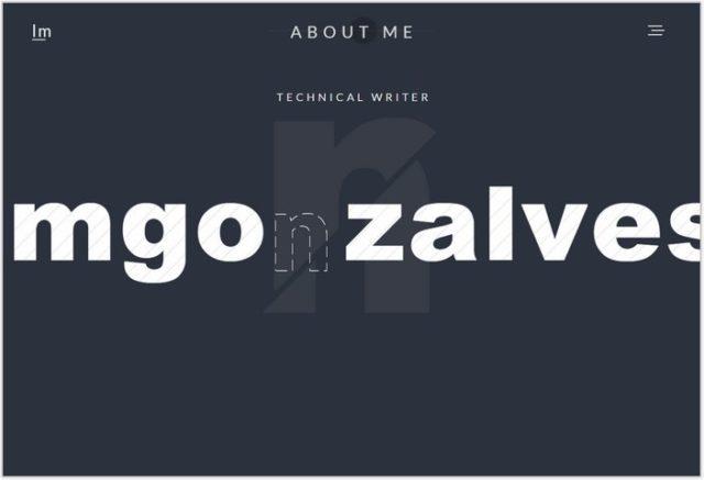 lmgonzalves- Single Page inspiration