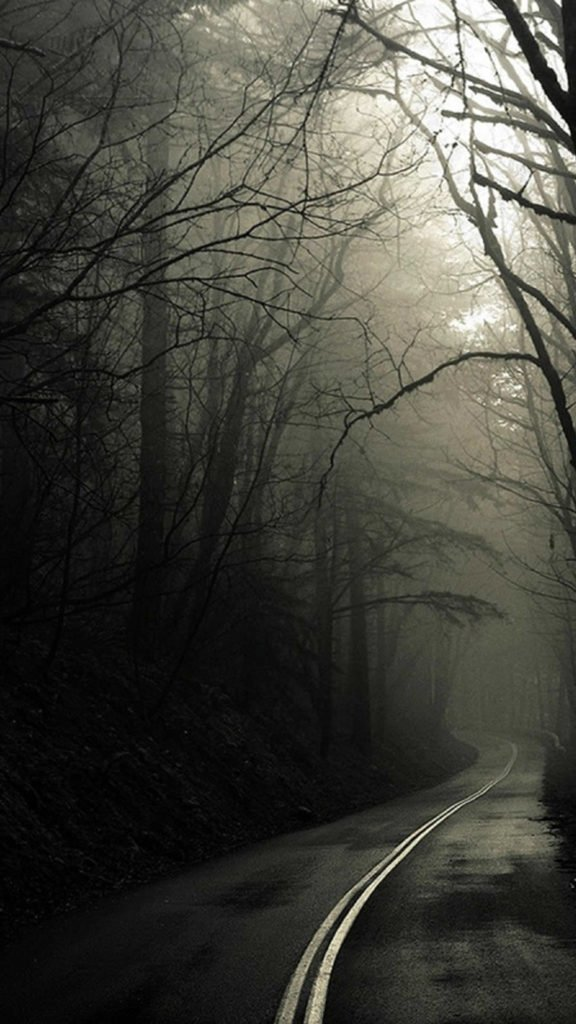 iPhone-forest-mysterious