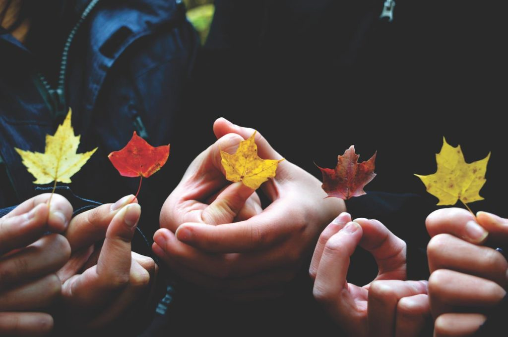 leaf in hand Tumblr Background-1352 × 899