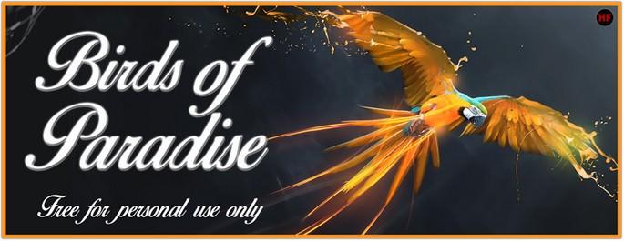 Birds of Paradise Font