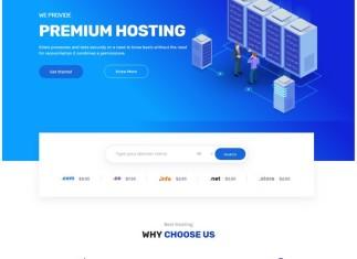 Hosting WordPress Theme