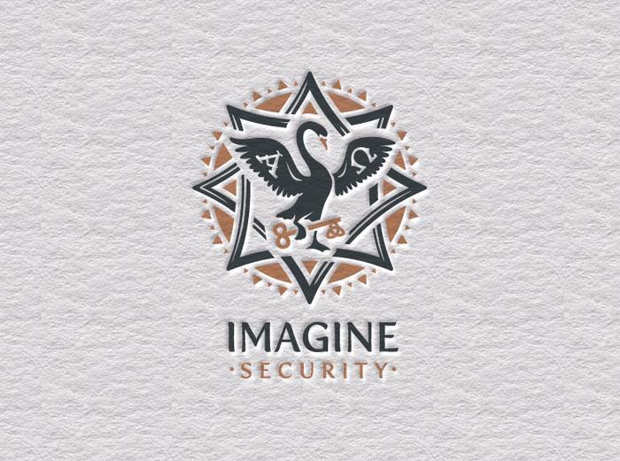 Imagine Security