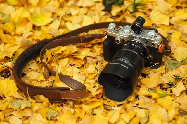 4608 × 3072 4k-Olympus-Camera-with-Fall-Leaf-Wallpapers