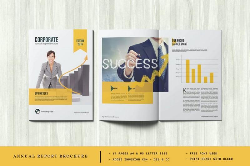 Professional Annual Report Brochure