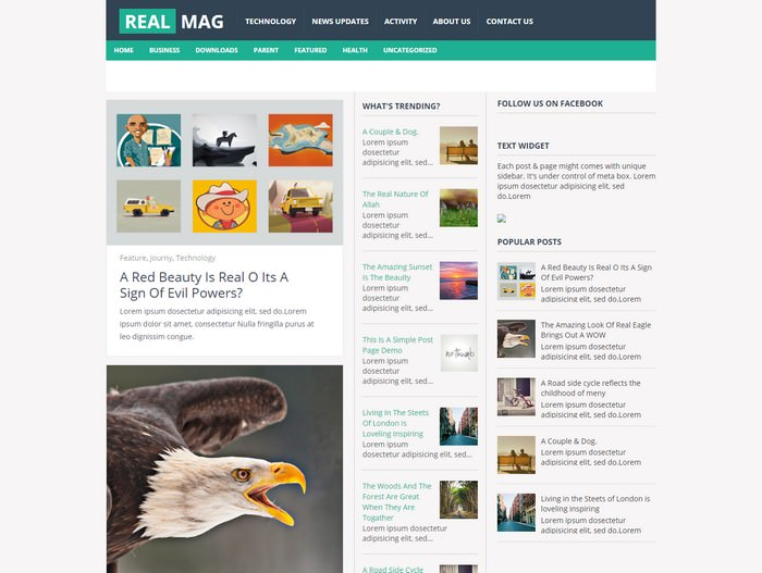 RealMagBlogger Template