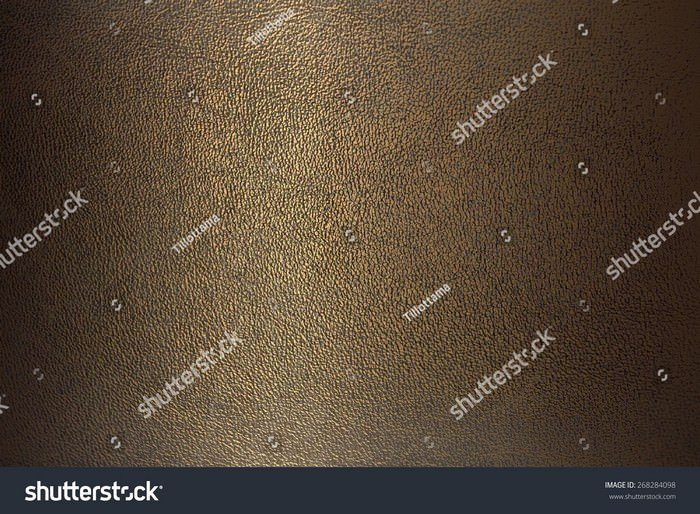 Texture Bronze Color Leather Close-up Horizontal Position