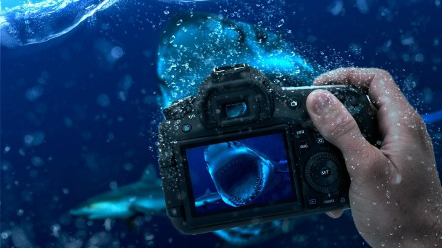 Underwater-Photography-Camera-HD-Wallpaper-1920 × 1080
