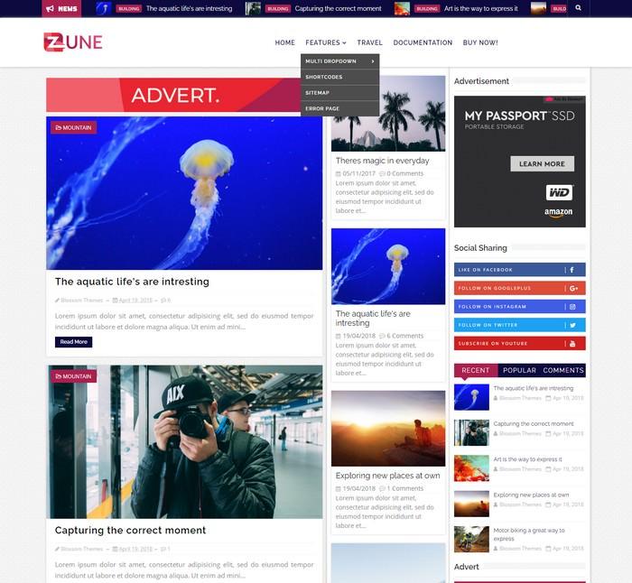 Zune Blogger Theme