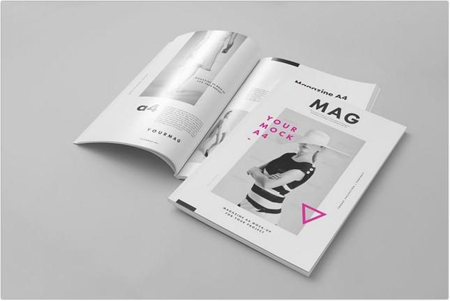 A4 Magazine Mock-up 2